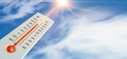 Quelques recommandations en période de température élévée