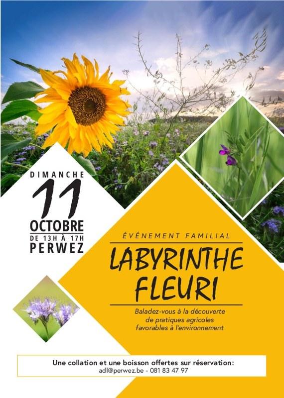 labyrinthefleuri a5 def1